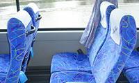 一般的な観光バスタイプで、リーズナブルなプランです。